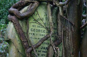 1562308-1-gravestone-in-highgate-cemetery