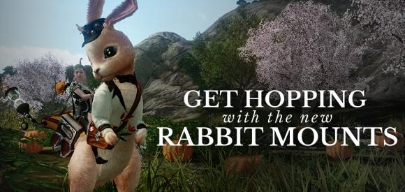 rabbitmounts
